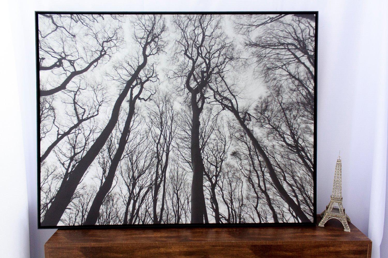 e3e665b17 Quadro Tela Decorativa com Moldura Paisagem Floresta Árvores sem Folhas  150x115cm