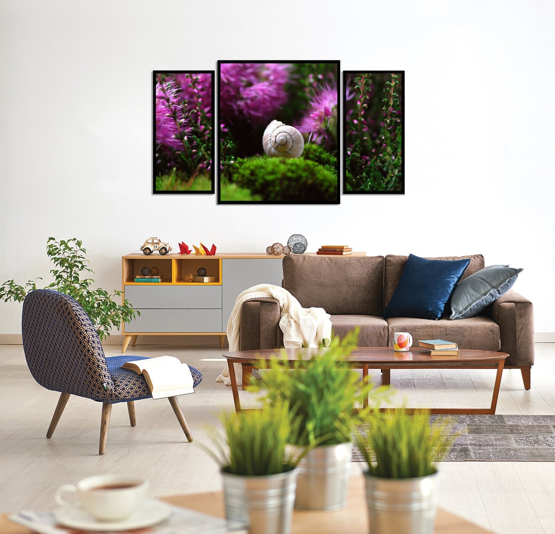 Kit de Quadros Decorativos Natureza Concha de Caracol 130x70cm