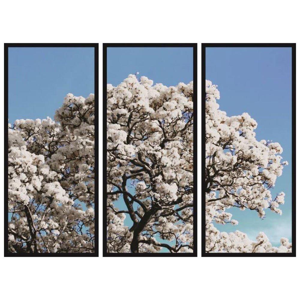 Conjunto Quadros Árvore Ipê Branco Kit com 3 Quadros 40x100cm