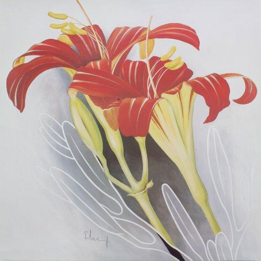 Gravura para Quadros Flor Liríos Vermelhos 70x70cm