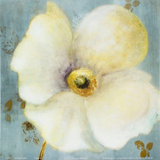 Gravura para Quadros Flor Papoula Branca 30x30cm