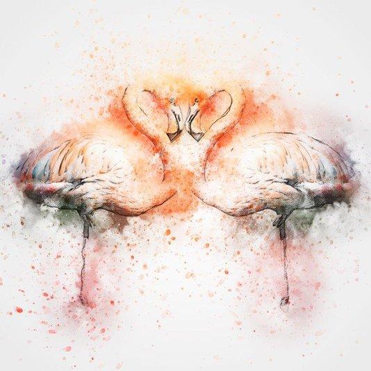 Quadro Decorativo Tela em Canvas Ilustração Aves Flamingos 60x60cm