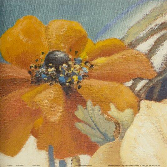 Gravura para Quadros Flor Papoula em Plena Floração 30x30cm