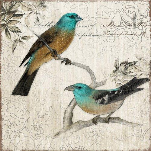 Quadro Tela Decorativa Casal de Pássaros 50x50cm