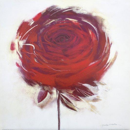 Gravura para Quadros Flor Rosa Vermelha 61x61cm