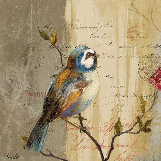 Quadro Tela Decorativa Pássaro II - 30x30cm