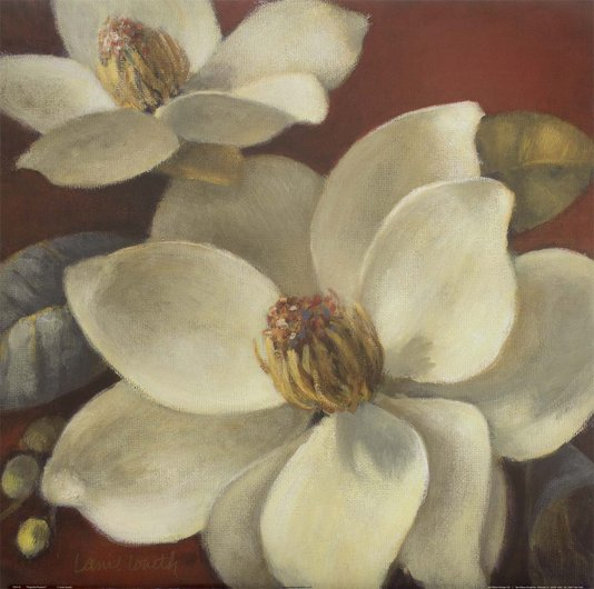 Gravura para Quadros Paixão Flor Magnólia Branca 61x61cm