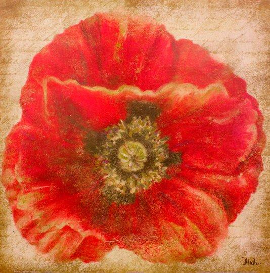 Gravura para Quadros Flor Papoula Vermelha Sobre Dourado 46x46cm