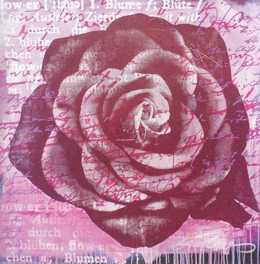 Gravura para Quadros Flor Rosa 70x70cm