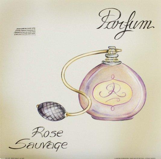 Gravura para Quadros Perfume Rose Salvage 30x30cm