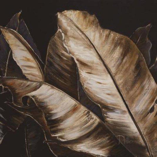 Gravura para Quadros Folhas de Bananeira Marrons 60x60cm