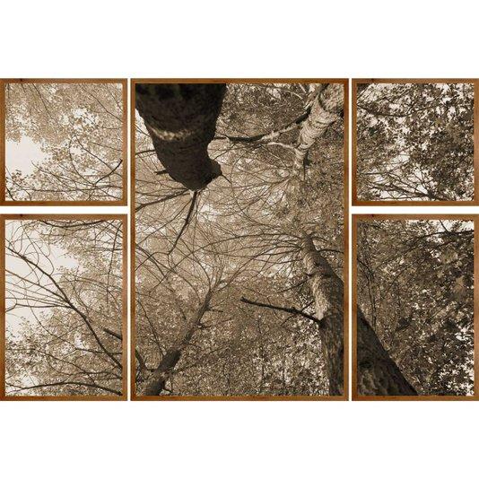 Conjunto de Quadros Árvores em Tom Sépia Kit com 5 Quadros