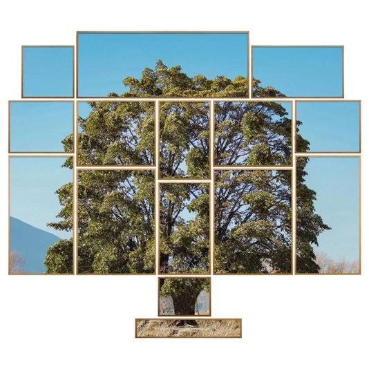 Conjunto de Quadros Paisagem Árvore Kit com 15 Quadros
