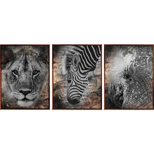 Conjunto Tela Canvas Animais em Preto e Branco Kit com 3 Quadros
