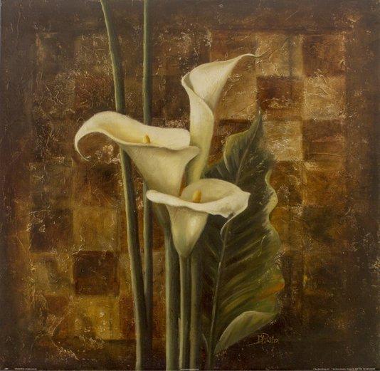 Gravura para Quadros Flor Copo de Leite 61x61cm