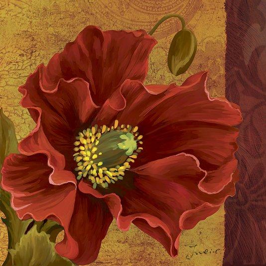 Quadro Tela Decorativa Flor Papoula Vermelha 60x60cm