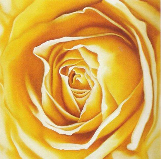 Gravura Floral para Quadros Flor Rosa Amarela 30x30cm