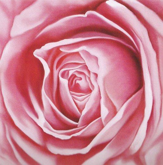 Gravura Floral para Quadros Rosa 30x30cm