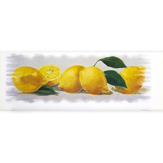 Gravura para Cozinha de Frutas Limão 70x25cm