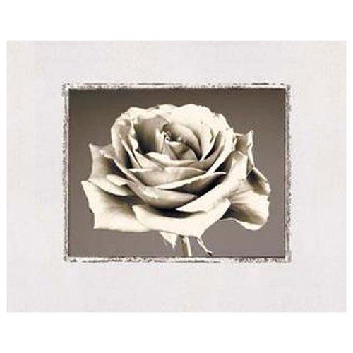 Gravura para Quadros Floral Flor em Preto e Branco 50x40cm