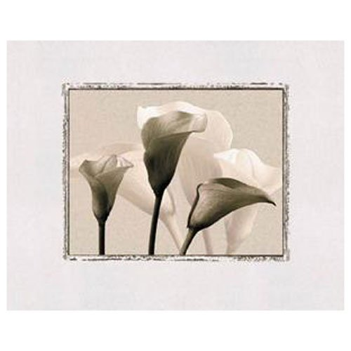 Gravura para Quadros Floral Flores em Preto e Branco 50x40cm
