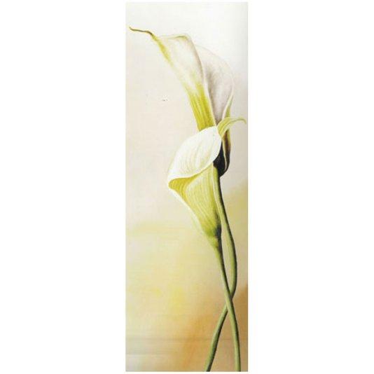 Gravura para Quadros Flores Copo de Leite 30x90cm