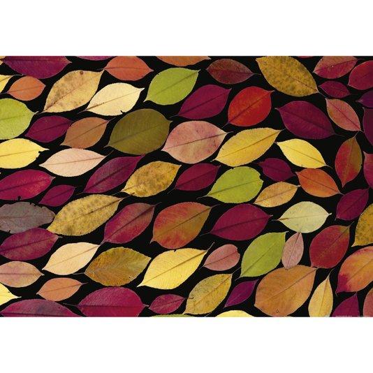 Gravura para Quadros Folhas Coloridas em Fundo Preto 100x70cm