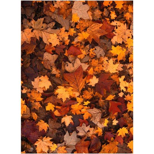 Gravura para Quadros Folhas Secas no Outono 55x75cm