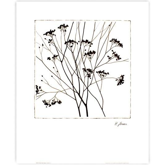 Gravura para Quadros Outono Floral 50x60cm