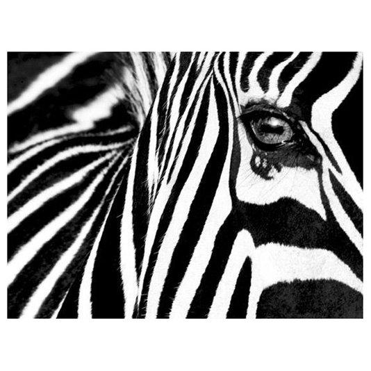 Gravura para Quadros Zebra 80x60cm