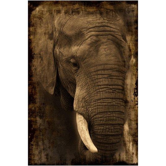 Gravura Imagem para Quadros Animal Elefante Africano 80x120cm