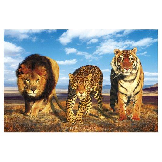 Gravura Poster para Quadros Leão Onça e Tigre 90x60cm