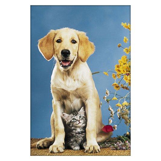 Gravura Poster para Quadros Pets Cachorro e Gato 60x90cm