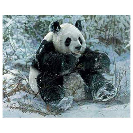 Gravura Poster para Quadros Urso Panda 50x40cm
