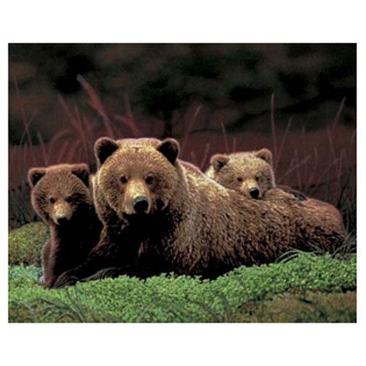Gravura Poster para Quadros Ursos 50x40cm