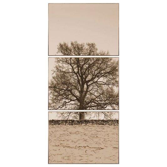 Kit Árvore em Sépia Conjunto com 3 Quadros de 80x60cm