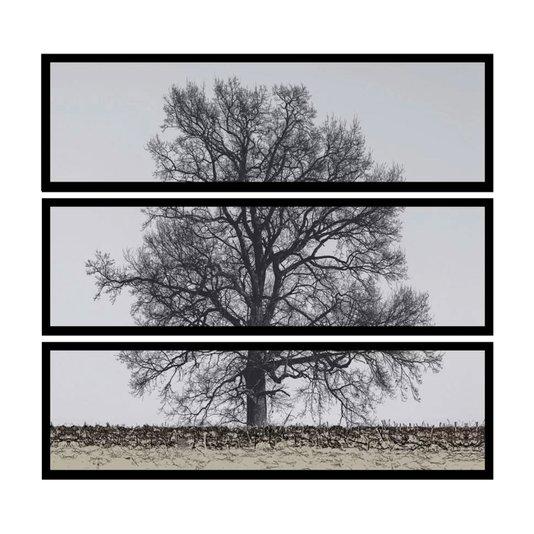 Kit de 3 Quadros Decorativos Árvore Kit de 150x140cm