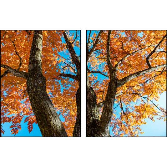 Kit de Quadros Árvore com Folhas Laranjas Kit com 2 Quadros de 60x80 cm