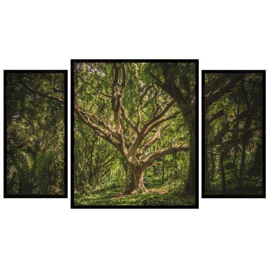 Kit de Quadros Decorativos Floresta Hawaii Árvores  130x70cm