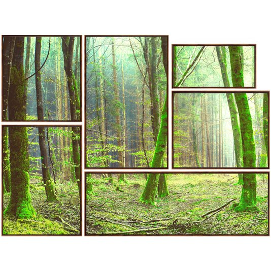 Kit de Quadros Imagem Floresta Tela Canvas com Moldura