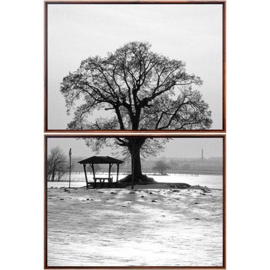 Kit de Quadros Tela Decorativa Árvore em Preto e Branco Moldura Marrom 70x110cm