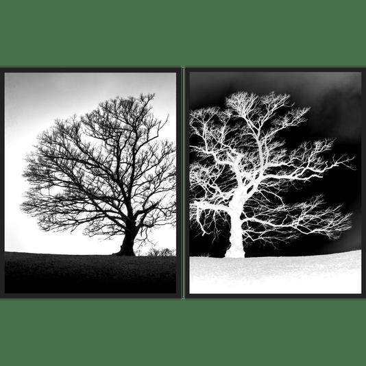 Kit Quadros em Preto e Branco Árvores Secas Positivo Negativo Par de Quadros 110x70cm