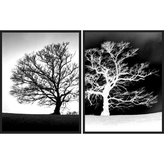 Par de Quadros em Preto e Branco Árvores Secas Positivo Negativo 90x60cm