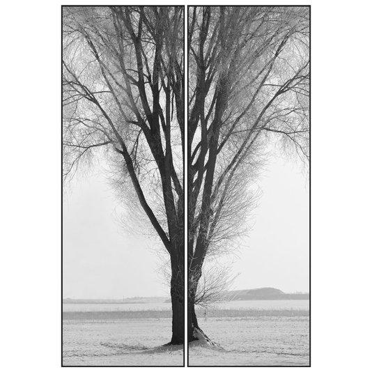 Par de Quadros Grandes em Preto e Branco Árvore Sem Folhas 120x180cm