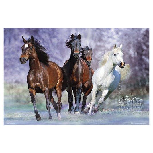Poster Cavalos Correndo 90x60cm com/sem Moldura