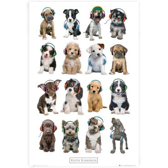 Poster Dogs com Fone de Ouvido 60x90cm com/sem Moldura