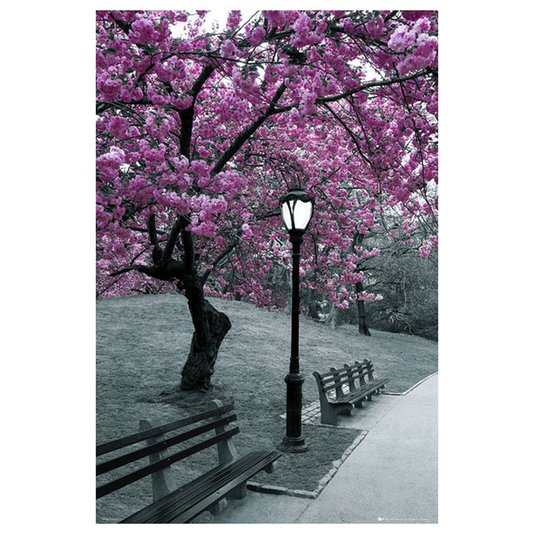 Poster para Quadros Árvore com Folhas Roxas 60x90cm