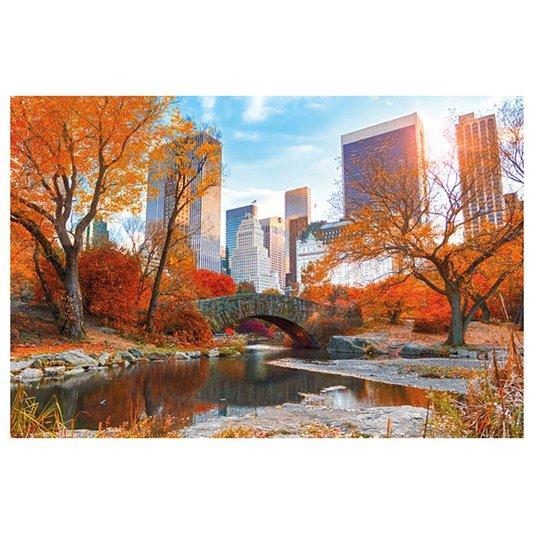Poster para Quadros Central Parque Nova York 60x90cm