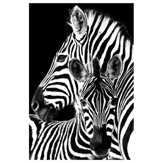 Poster para Quadros Zebras 60x90cm