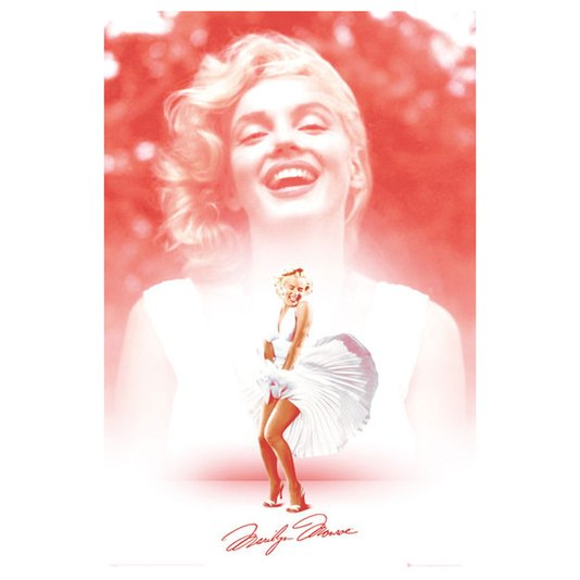Poster Rosa Marilyn Monroe 60x90cm